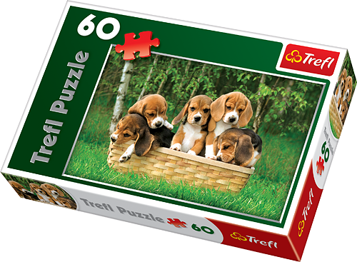 Image of   Beagle Puppies, 60 brikker