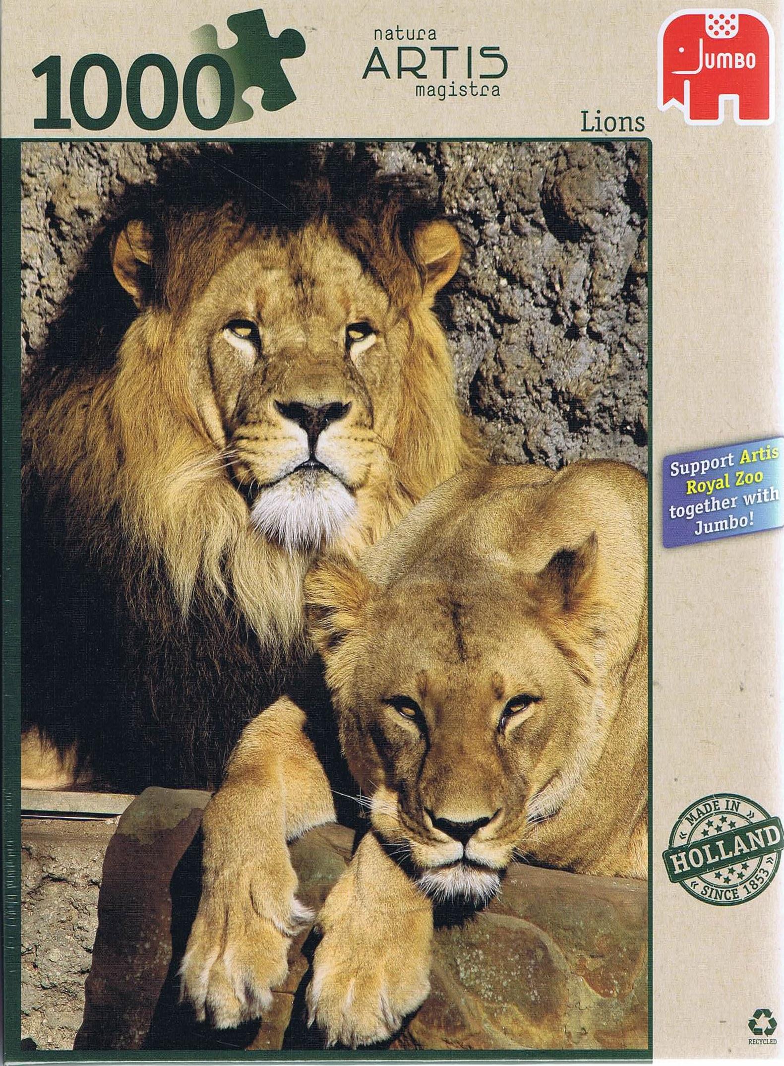 Image of   Lions, 1000 brikker