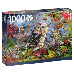 Owls in the Moonlight, 1000 brikker (1)