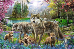 Family of Wolves - 1000 Brikker (2)